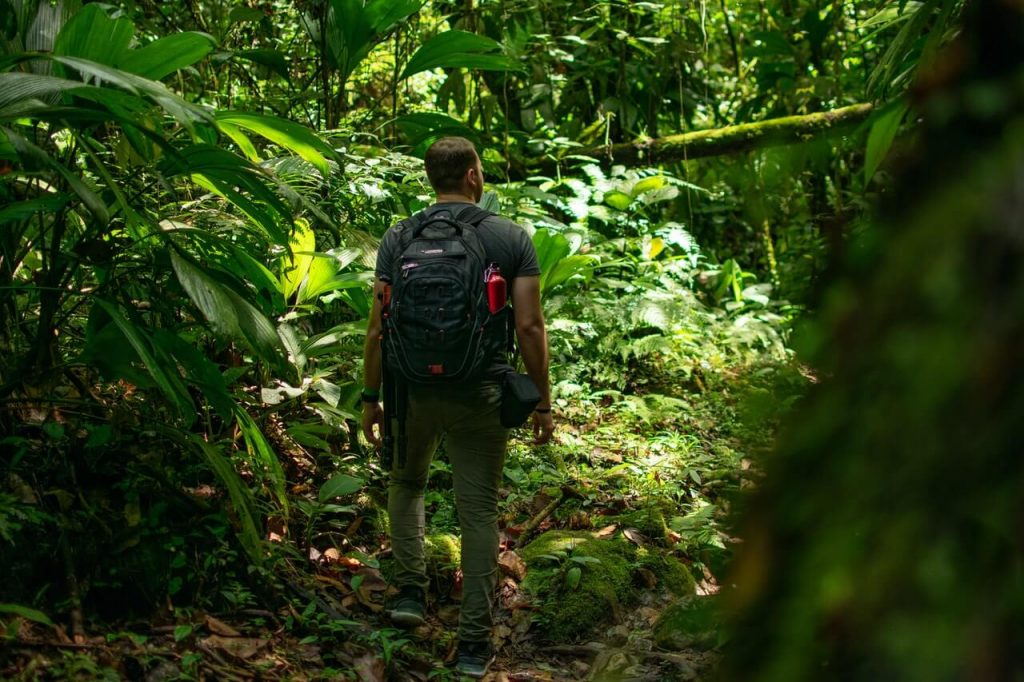 Is Hiking Better Than Walking?